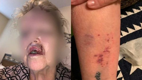 Galveston shop offers $5,000 in reward after the attack on Grandmother at Kroger