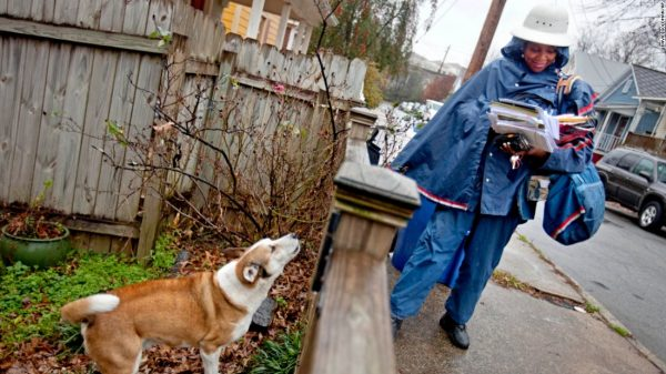 Houston has the Highest Number of dog Attacks on Postal Workers in the United States