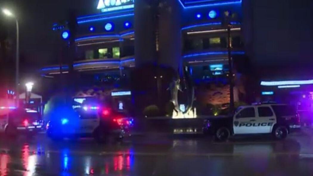 Houston Aquarium Shooting: 2 Dead Including The Accused Gunman, 1 Left Injured