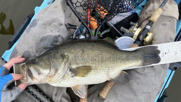 texas fishing forum
